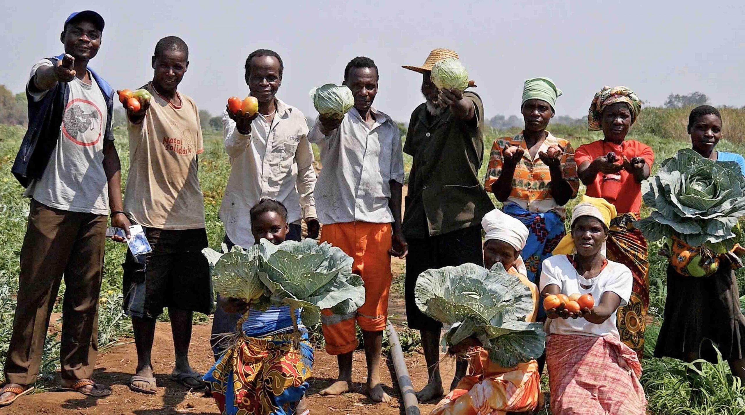 Claves para erradicar la inseguridad alimentaria