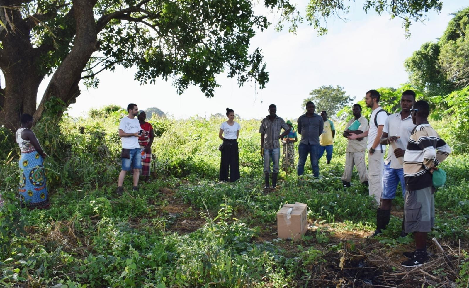 El confinamiento amenaza aún más a la frágil economía de Mozambique