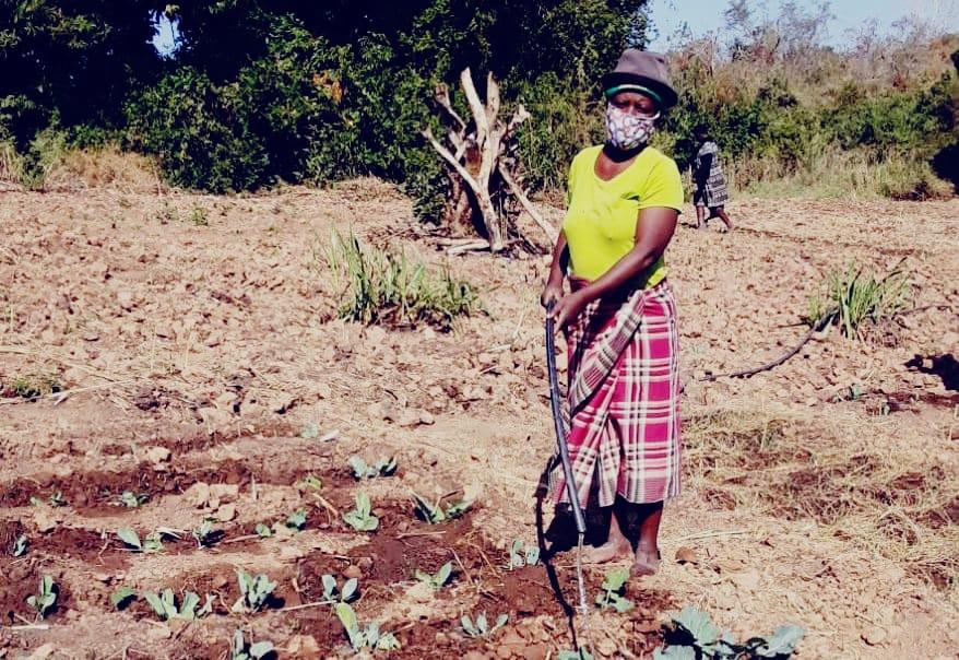 Rosa José cultiva su machamba protegida con su mascarilla contra el coronavirus en Mozambique